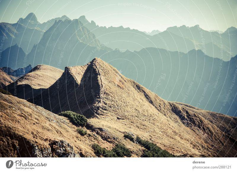 Allgäuer Hochalpen Ferien & Urlaub & Reisen schön Freude Ferne Berge u. Gebirge Wärme Gras Freiheit braun oben Horizont wild Tourismus wandern Ausflug