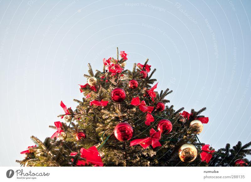 Weihnachten blau Himmel (Jenseits) grün schön rot Freude Feste & Feiern glänzend Zeichen Weihnachtsbaum Kugel Tanne Christbaumkugel Weihnachten & Advent