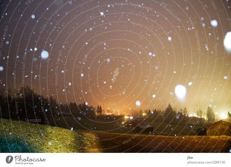 erster Schnee Leben Wohlgefühl Umwelt Natur Urelemente Luft Wolken Winter Schneefall Wiese Saanenland fallen Farbverlauf Platz Fleck weiß gefleckt