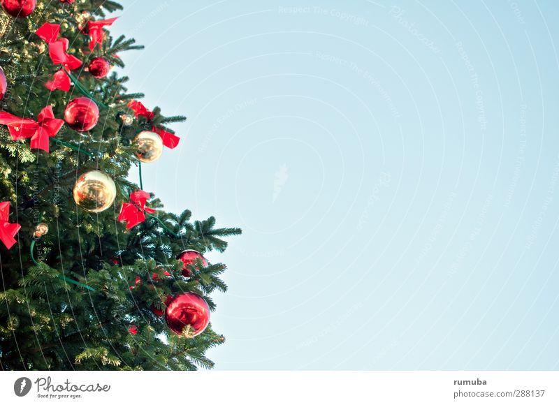 Christbaum Weihnachten & Advent blau Himmel (Jenseits) grün rot Feste & Feiern glänzend Textfreiraum Zeichen Weihnachtsbaum Kugel Tanne Geborgenheit