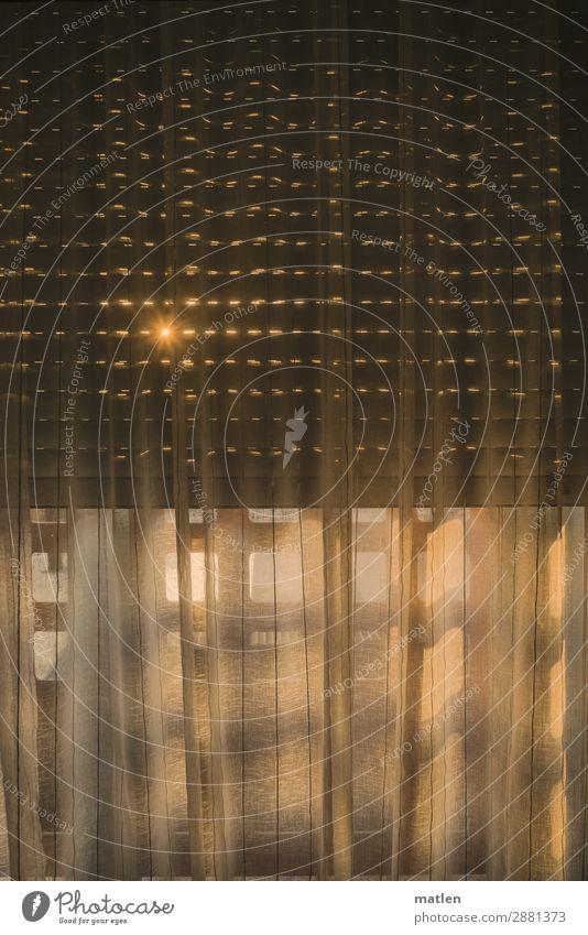 Guten Morgen Fenster leuchten Wärme grau orange Gardine Jalousie Zwinkern Geldscheine Farbfoto Innenaufnahme Strukturen & Formen Textfreiraum links