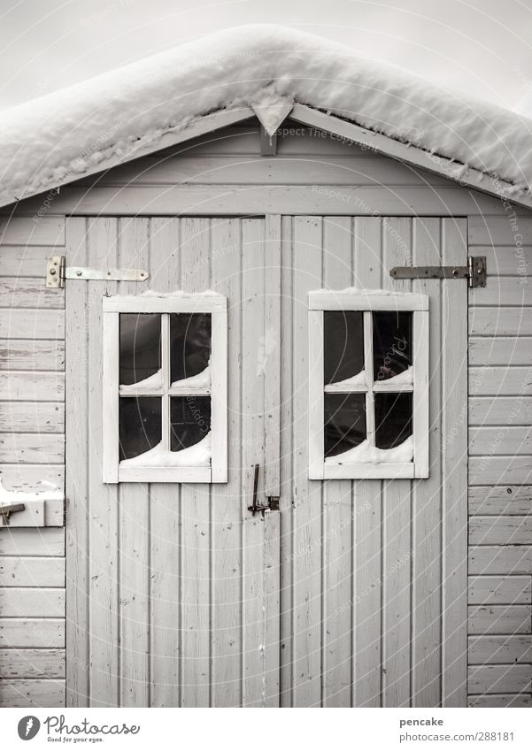 still waiting Schnee Haus Hütte Fassade Holz Vorfreude Gelassenheit geduldig ruhig standhaft Idylle Schutz warten Holzhütte Fenster Fensterkreuz Tor Tür