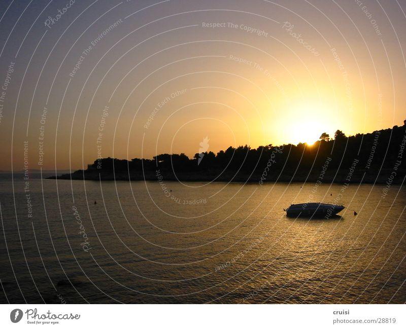 Sonnenuntergang Wasser Meer Horizont Pinie