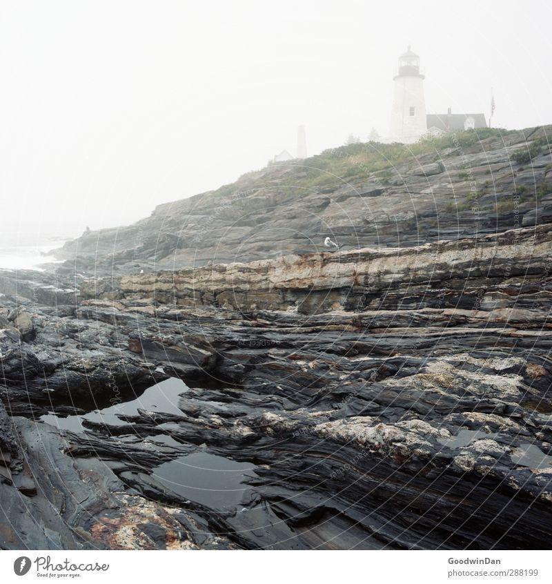 New England Natur alt Wasser Meer Landschaft Umwelt kalt Herbst Küste Felsen Stimmung Wetter Erde wild groß authentisch