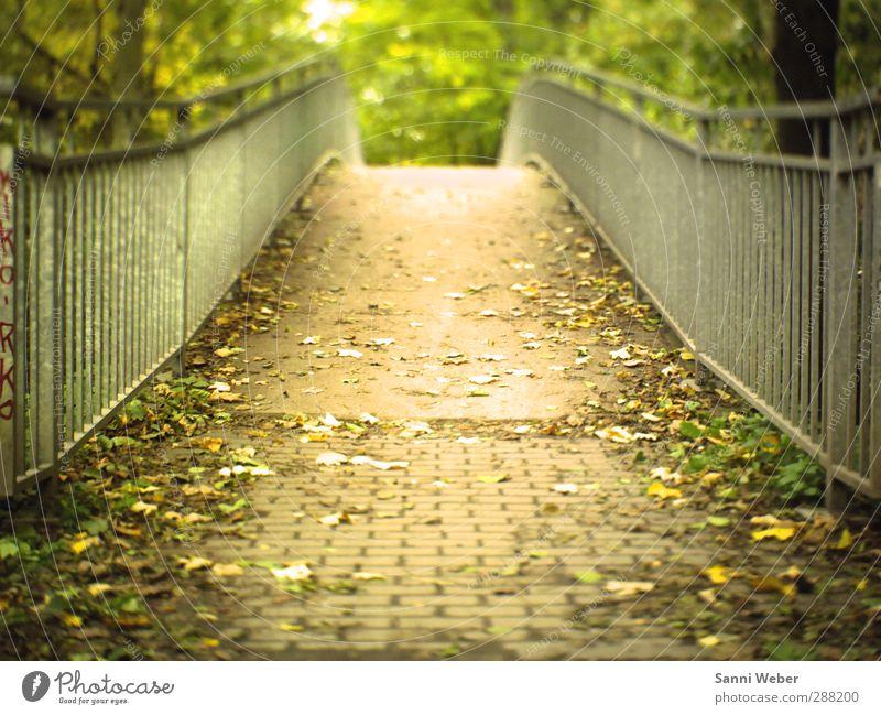 Natur Stadt schön Einsamkeit Landschaft Blatt Herbst Denken Garten Stimmung Park Tourismus frei Fröhlichkeit Brücke Abenteuer