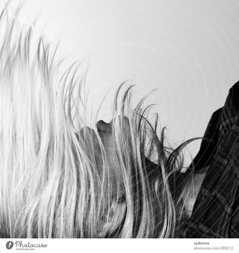 Haarwuchs Mensch Jugendliche schön ruhig Erwachsene Gesicht Junge Frau Gefühle Gras Bewegung Haare & Frisuren Freiheit Stil 18-30 Jahre Zeit träumen