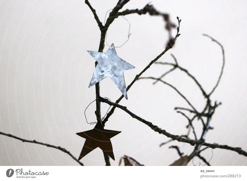 Sternengrafik Weihnachten & Advent weiß schwarz Holz grau Metall glänzend elegant Design Stern Dekoration & Verzierung ästhetisch Zeichen Kreativität hängen silber