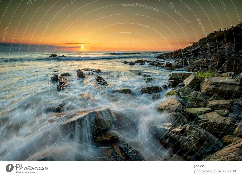 Langzeitbelichtung von wasserumströmten Felsen im Meer mit Sonnenuntergang Starke Tiefenschärfe Abend Sonnenaufgang Sonnenlicht Kontrast Menschenleer Gegenlicht