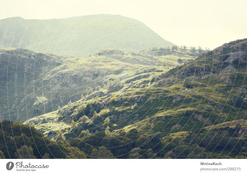 let england shake. Umwelt Natur Landschaft Pflanze Erde Himmel Sonnenlicht Frühling Sommer Schönes Wetter Grünpflanze Feld Wald Hügel Felsen Gipfel Farn