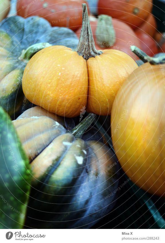 Ritze lustig Lebensmittel Ernährung Gesäß Gemüse Bioprodukte Kürbis Vegetarische Ernährung Wochenmarkt Gemüsemarkt