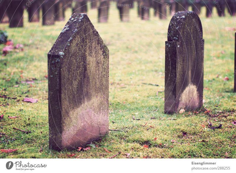R.I.P. alt dunkel Wiese Herbst Tod stehen Vergänglichkeit Trauer Ende Verfall Friedhof Grab Grabstein Grabmal