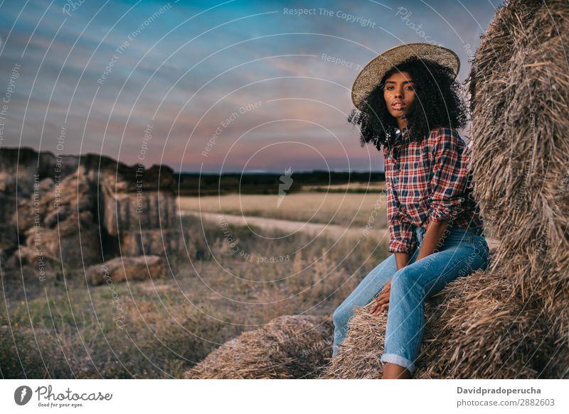 Glückliche schwarze junge Frau, die auf einem Haufen Heu sitzt. Landwirt Sommer urwüchsig Afrikanisch Landschaft Natur Länder Himmel Erholung Lifestyle