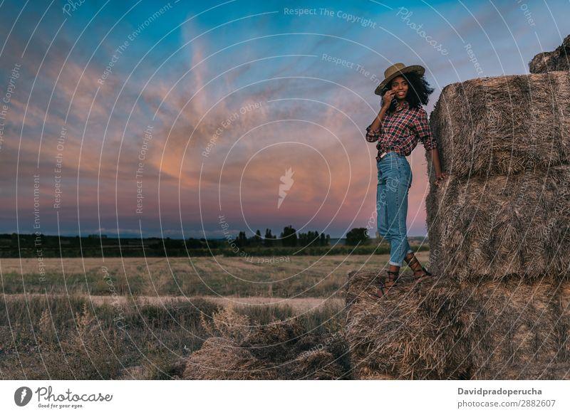 Glückliche schwarze junge Frau, die auf einem Haufen Heu steht. Landwirt Sommer urwüchsig Afrikanisch Landschaft Natur Länder Himmel Erholung Lifestyle