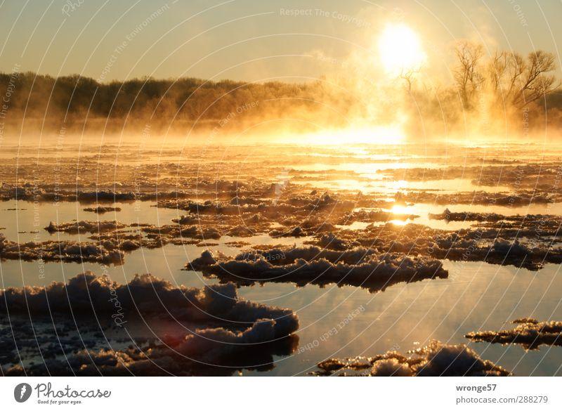 Eiselbe Natur Landschaft Wasser Himmel Sonne Sonnenaufgang Sonnenuntergang Sonnenlicht Winter Frost Fluss Elbe Deutschland Sachsen-Anhalt Menschenleer kalt nass