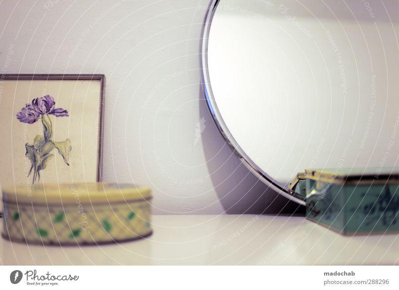 Männerhaushalt schön Pflanze Wärme feminin Innenarchitektur Stil Stimmung Wohnung elegant Ordnung Design Häusliches Leben Lifestyle Dekoration & Verzierung