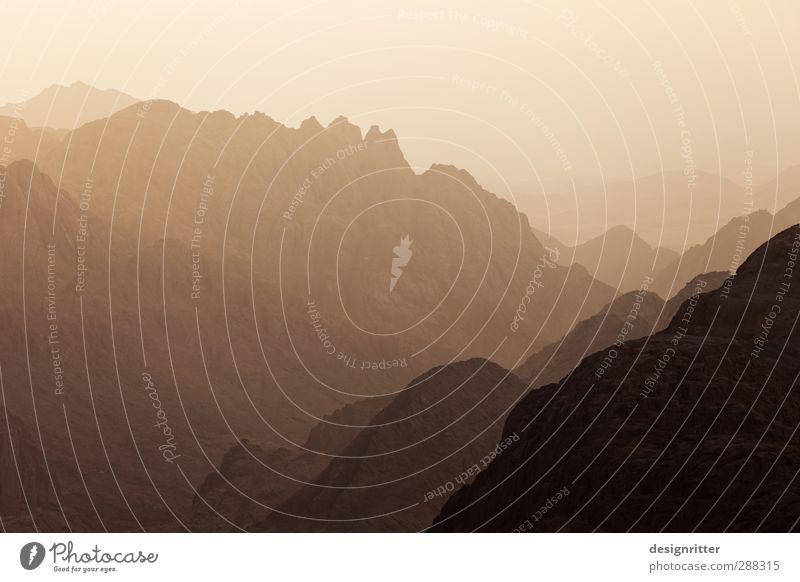 600 x Danke Ferien & Urlaub & Reisen Ferne Berge u. Gebirge Felsen Horizont Tourismus Abenteuer Gipfel Wüste Höhenangst Respekt Schüchternheit Sinai-Berg