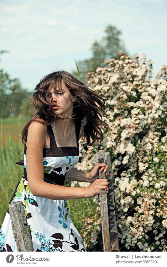 Fackeln im Sturm Mensch Jugendliche schön Junge Frau Erwachsene 18-30 Jahre Liebe Erotik Gefühle feminin Haare & Frisuren Mode elegant laufen 13-18 Jahre