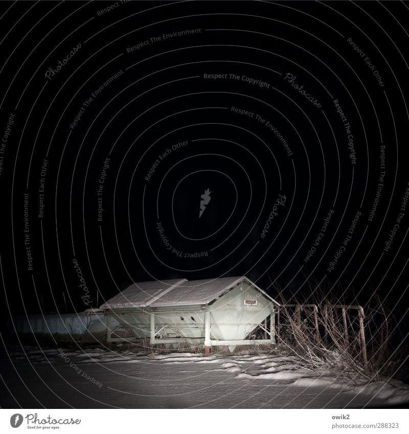 Dunkle Jahreszeit Natur weiß Einsamkeit Landschaft Winter schwarz dunkel Umwelt Schnee Beleuchtung Metall Eis trist Sträucher gefährlich bedrohlich