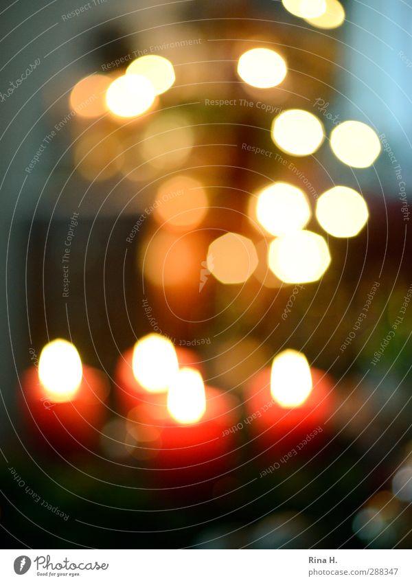 OOF Advent Weihnachten & Advent rot leuchten Lebensfreude Kerze Tradition Vorfreude Stillleben gemütlich Licht Freude Kerzenflamme
