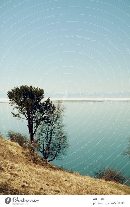Gedankenreise Natur Landschaft Wasser Himmel Wolkenloser Himmel Horizont Frühling Schönes Wetter Schnee Wiese Hügel Berge u. Gebirge Küste Seeufer Baikalsee