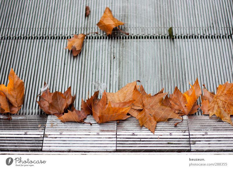 sammelstelle. Stadt Blatt kalt Innenarchitektur Bewegung Herbst braun gehen Metall glänzend Treppe Verkehr fahren rennen Stahl Stadtzentrum