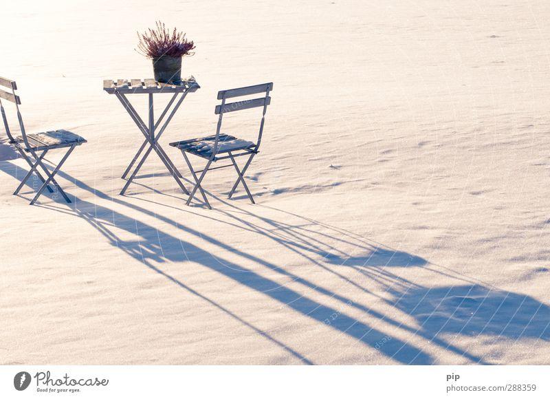 winterpause Natur Einsamkeit Winter kalt Schnee Idylle Tisch Stuhl Schneedecke Gartenstuhl Biertische Heide-Nelke