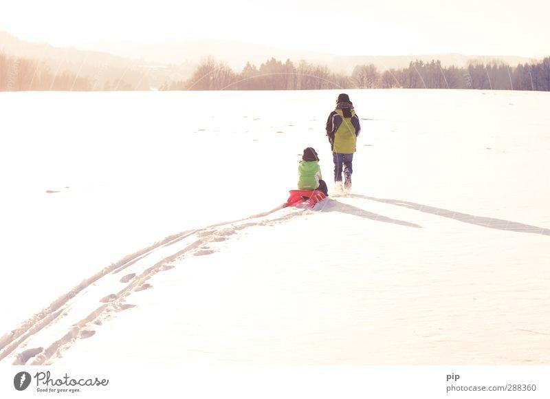 oh, what fun it is to ride Mensch Natur schön Freude Winter Landschaft Wald Ferne Umwelt Schnee Junge hell Horizont Freundschaft Zusammensein Eis