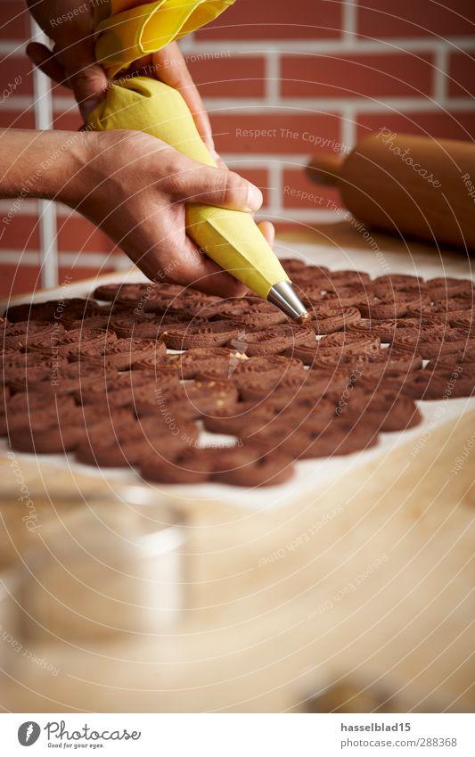 Weihnachtsbäckerei Plätzchen 3 Mensch Weihnachten & Advent Hand Lebensmittel Ernährung genießen Kochen & Garen & Backen Beruf Süßwaren Bioprodukte Getreide Duft