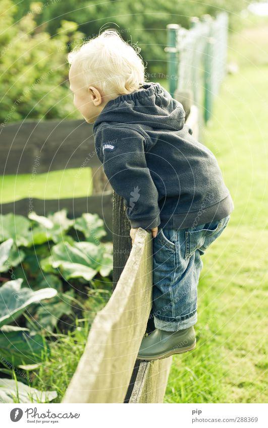 grenzen ausloten Kind Junge Kindheit Haare & Frisuren 1 Mensch 1-3 Jahre Kleinkind Natur Landschaft Frühling Schönes Wetter Garten Wiese Pullover Gummistiefel