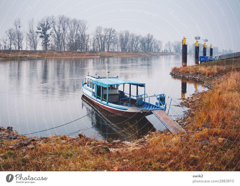 Kurz vor Wittenberg Himmel Natur Pflanze Wasser Landschaft Baum ruhig Herbst Umwelt Gras Deutschland Wasserfahrzeug Zufriedenheit Horizont liegen Idylle