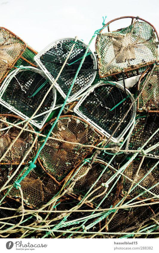 Hafenkante Freizeit & Hobby Angeln dreckig Rost Reuse Fischfang Fischereiwirtschaft Aal Seil Netz grün Erholung Vergangenheit Angler Gerät fangen Farbfoto
