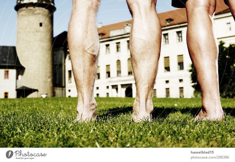 Fußballshow Beinarbeit Gesundheit Sport Sportmannschaft Brust Wasser Stadt Burg oder Schloss Hose nackt grün Fussball Beine Team Schienenbein Haut Rasen üben