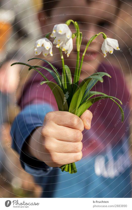 Frühlingsgruß Kind Arme Hand 1 Mensch Blume Blüte Garten Park Wald gebrauchen festhalten Blick stehen Fröhlichkeit frisch Freude Zufriedenheit Lebensfreude