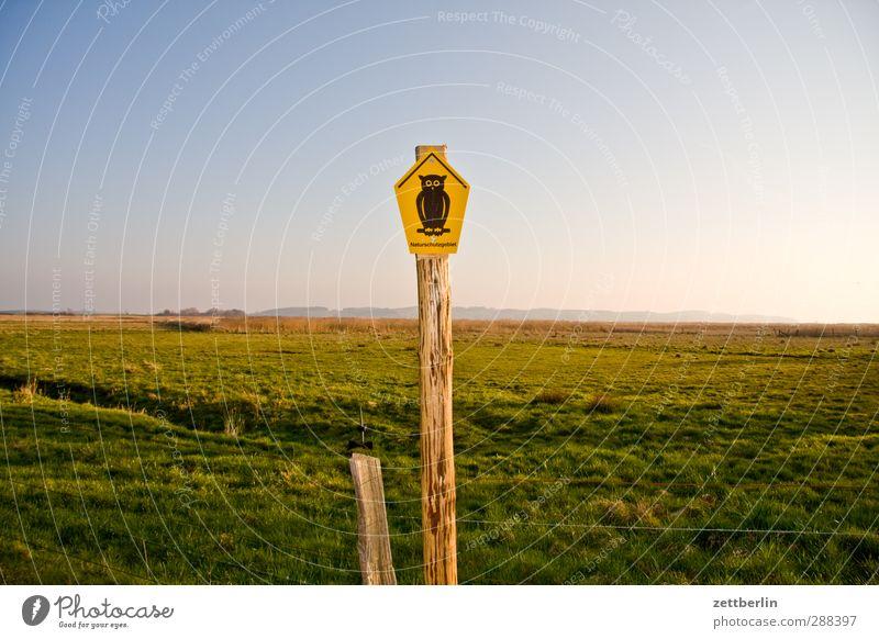 Naturschutz Himmel Pflanze Sonne Freude Landschaft Ferne Umwelt Wiese Gras Holz Glück Horizont Wetter Feld Klima Schilder & Markierungen