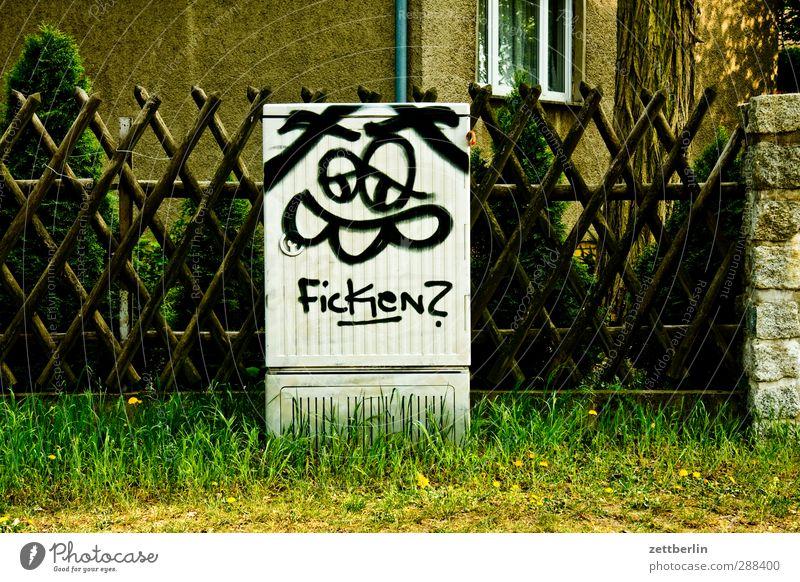 Ficken? Haus Gesicht Liebe Graffiti Gras Sex Schriftzeichen Hinweisschild Wunsch Neugier Dorf Zaun Fragen Sexualität Ehrlichkeit Kleinstadt