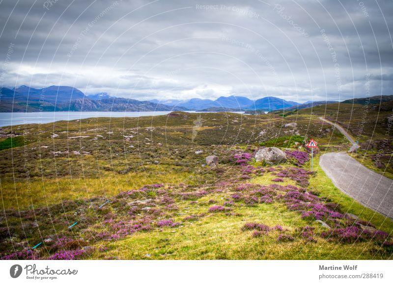 Schottland Ferien & Urlaub & Reisen Ausflug Ferne Freiheit Natur Landschaft Wolken Klima Gras Sträucher Moos Heide Bucht Fjord Großbritannien Europa Straße