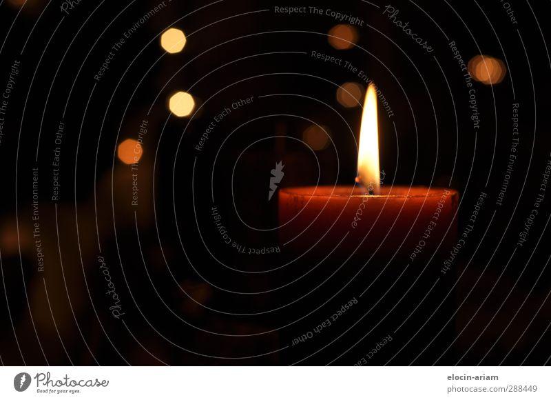Kerze schön Einsamkeit Wärme Tod Gefühle hell Zufriedenheit leuchten Hoffnung Vergänglichkeit Trauer Duft Adventskranz