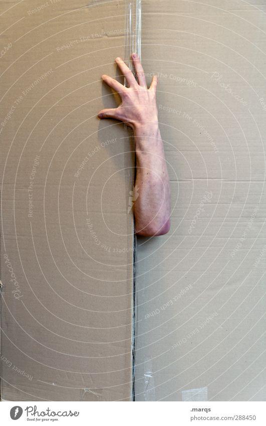 Durchgreifen Hand außergewöhnlich Arme Finger Geschenk Suche Zeichen Umzug (Wohnungswechsel) Karton Überraschung gefangen Diebstahl Umzugskarton Durchsetzungsvermögen ausbrechend