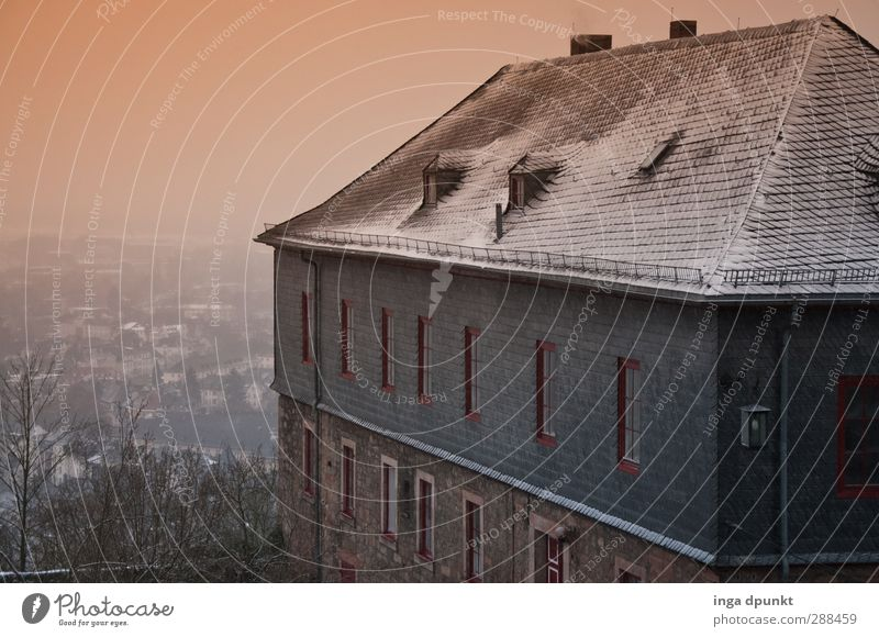Neuschnee Winter Umwelt kalt Schnee Eis Frost Hügel Bundesadler Hessen Marburg