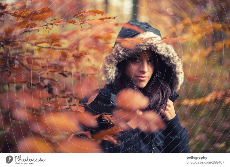 Es herbstet sehr (1) Mensch feminin Junge Frau Jugendliche Erwachsene Leben 18-30 Jahre Natur Landschaft Pflanze Herbst Schönes Wetter Baum Sträucher Blatt
