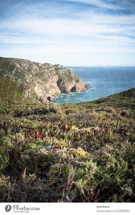 Portugal Natur Meer Landschaft Ferne Küste Schönes Wetter Sträucher Hügel exotisch