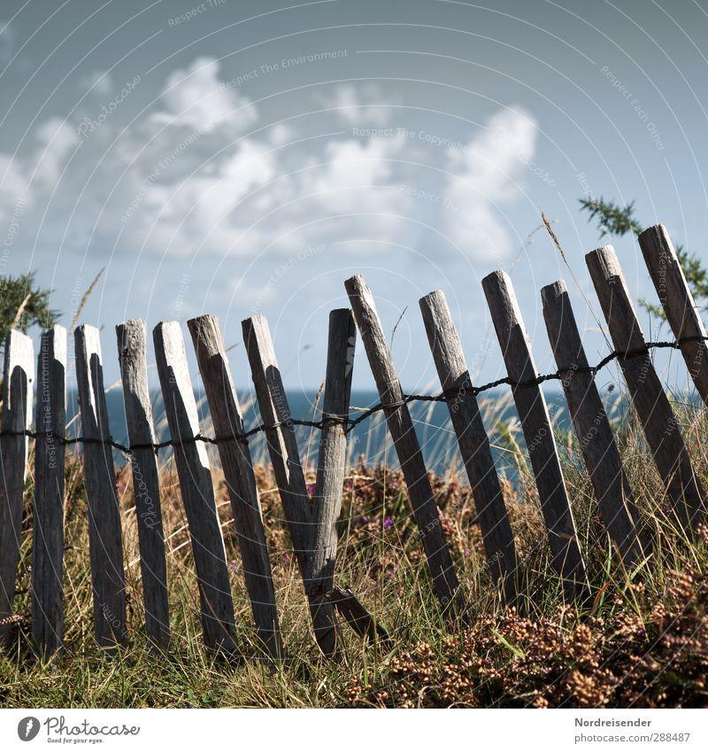 Bretonische Küste Ferien & Urlaub & Reisen Tourismus Ausflug Meer Natur Landschaft Pflanze Sommer Gras Sträucher Wege & Pfade Holz Erholung kaputt Sicherheit