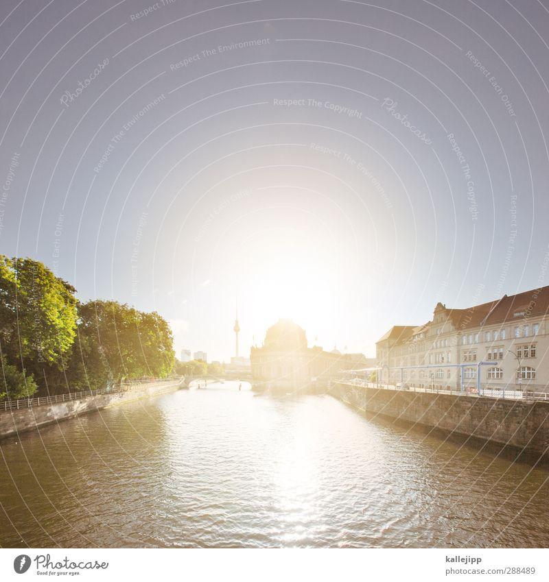 die alte dame Stadt Pflanze Baum Berlin Architektur Gebäude Kunst Schönes Wetter Turm Fluss Kultur Freundlichkeit Bauwerk Flussufer Wolkenloser Himmel Museum