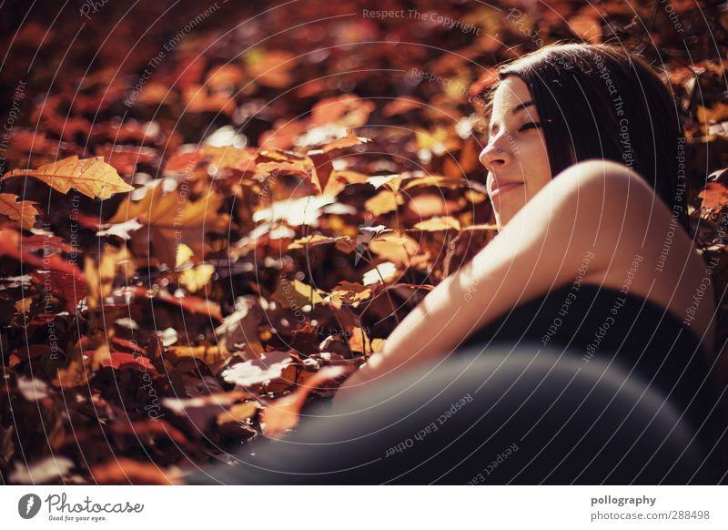Es herbstet sehr (5) Mensch Frau Natur Jugendliche Pflanze Baum Sonne Blatt Erholung Erwachsene Gesicht Wald Junge Frau Umwelt Herbst Leben