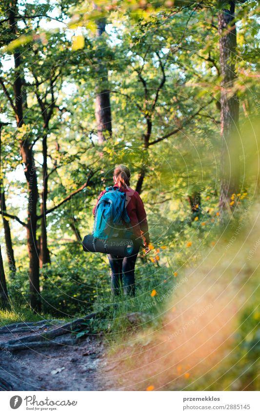 Wanderin mit Rucksack beim Waldwandern während der Sommerreise Lifestyle schön Erholung Freizeit & Hobby Ferien & Urlaub & Reisen Abenteuer Freiheit Mensch Frau