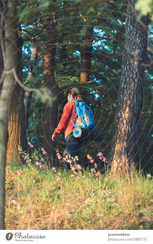Wanderin mit Rucksack im Wald während der Sommerreise Lifestyle schön Erholung Freizeit & Hobby Ferien & Urlaub & Reisen Abenteuer Freiheit wandern Mensch Frau