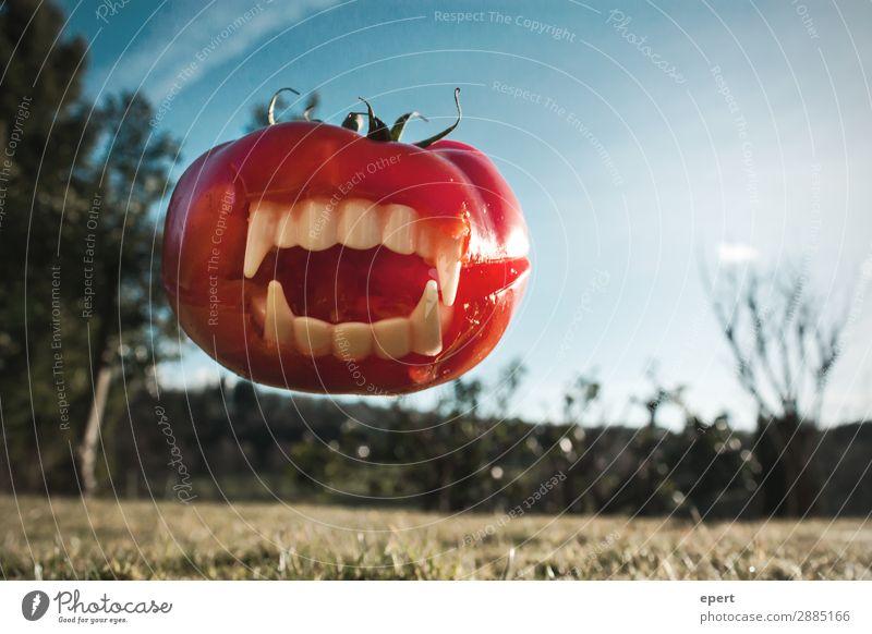 Angriff der Fleischtomate Gemüse fangen Fressen springen Aggression bedrohlich gruselig trashig verrückt wild gefährlich bizarr skurril Vampir Zähne beißen