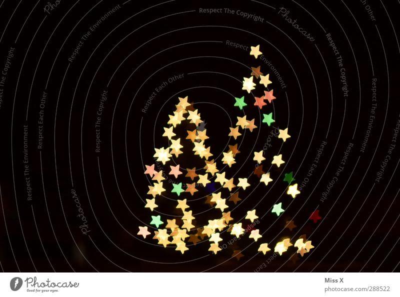 Zählt mal die Sterne Weihnachten & Advent Baum Winter glänzend leuchten Stern (Symbol) viele Weihnachtsbaum Tanne Weihnachtsdekoration Nachthimmel Lichterkette