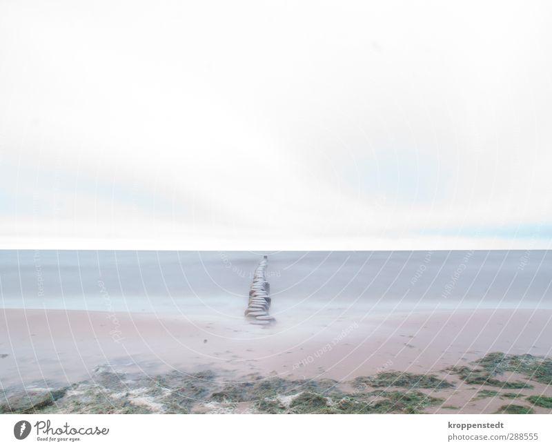 Glattgezogen Natur blau Ferien & Urlaub & Reisen Wasser Strand Wolken Landschaft Erholung Herbst Bewegung grau Küste springen Schwimmen & Baden Luft träumen