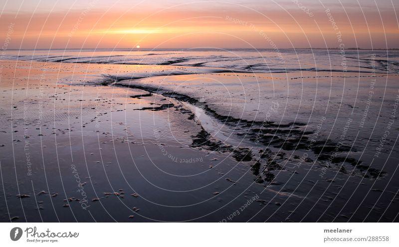 Sonnenuntergang im Wattenmeer Umwelt Landschaft Sand Wasser Himmel Horizont Sonnenaufgang Schönes Wetter Küste Nordsee Meer ästhetisch gelb rot Stimmung ruhig